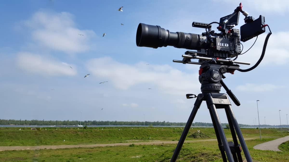 Filmopnames in de Rotterdamse haven